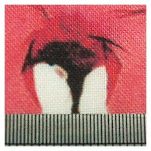 Open House Miniatures - Spoonflower Test Print - minimal colour bleed