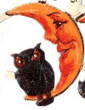 Halloween - crescent moon owl